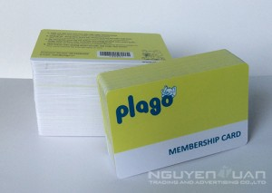 in thẻ membership card
